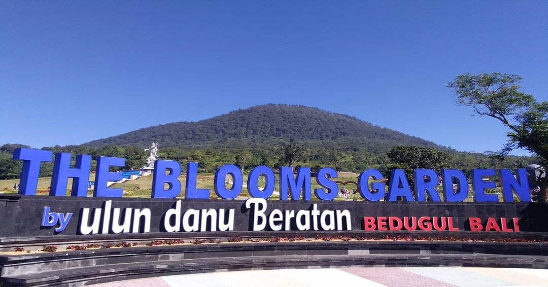blooms garden balipancatour 2